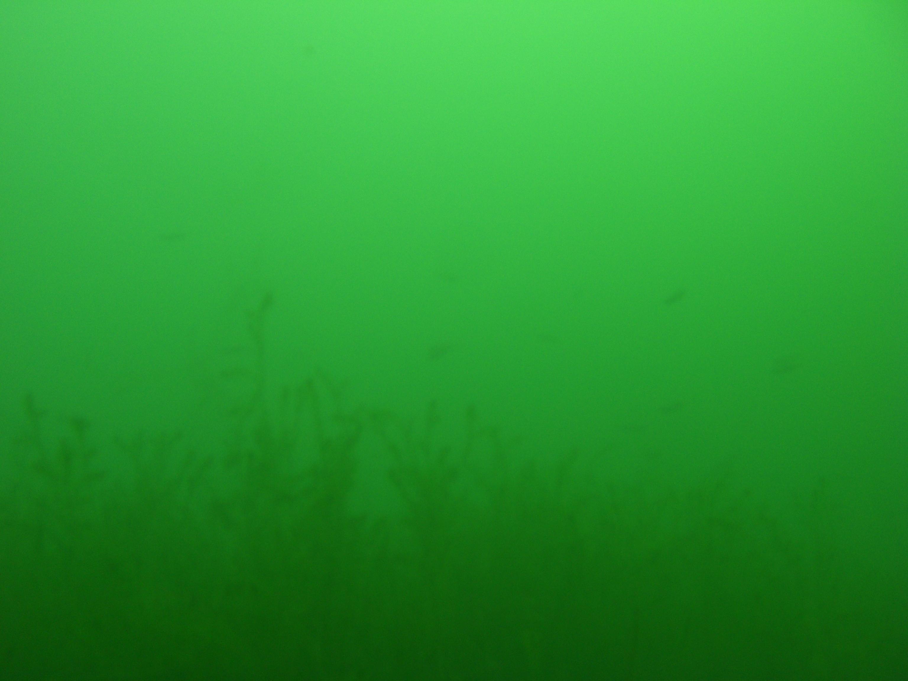 cimg5323